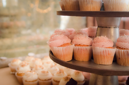 Wedding Cupcakes Cleveland Athens Tennessee TN Photographer