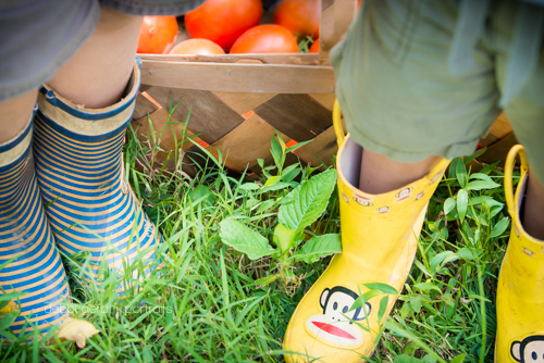 kids'  boots garden tomatoes photography pictures Athens TN