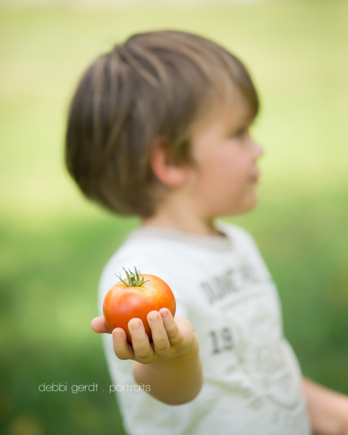 kids garden tomatoes Photography pictures Athens TN