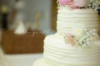 Etowah wedding cake athens cleveland tennessee photographer
